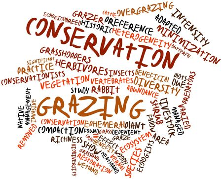 vernal: Abstract word cloud for Conservation grazing with related tags and terms Stock Photo