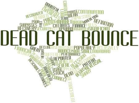 business case: Abstract word cloud for Dead cat bounce with related tags and terms Stock Photo