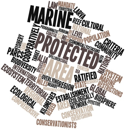 Abstract word cloud for Marine protected area with related tags and terms Stock Photo - 16500657