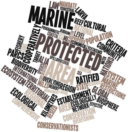 Nuage de mots abstraits pour la zone protégée marine avec des étiquettes et des termes connexes Banque d'images