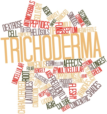 secreted: Abstract word cloud for Trichoderma with related tags and terms Stock Photo