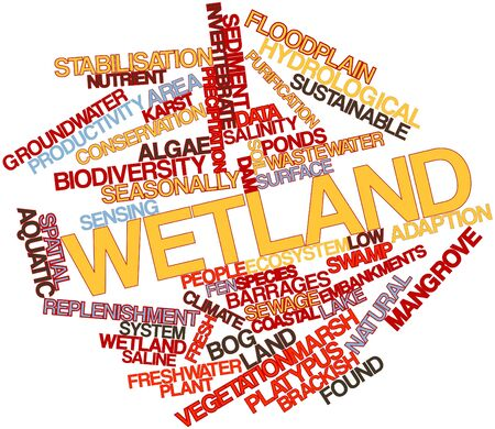 floodplain: Abstract word cloud for Wetland with related tags and terms Stock Photo