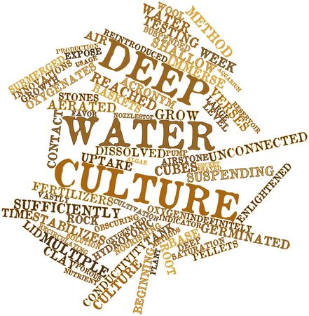Abstract word cloud for Deep water culture with related tags and terms
