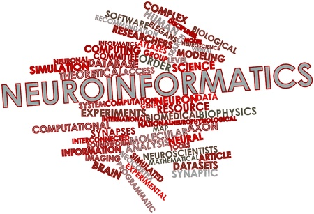 synaptic: Abstract word cloud for Neuroinformatics with related tags and terms Stock Photo