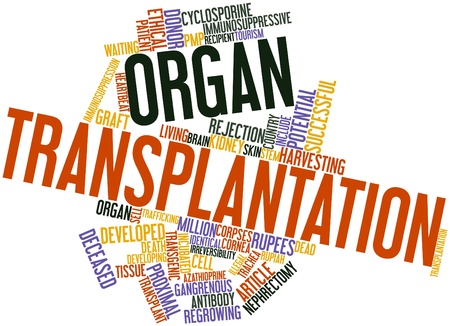 Abstract word cloud for Organ transplantation with related tags and terms photo