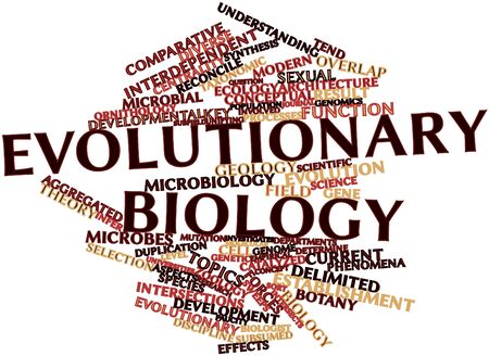 constraints: Abstract word cloud for Evolutionary biology with related tags and terms