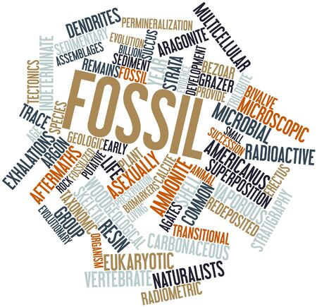 Abstract word cloud for Fossil with related tags and terms Stock Photo - 16502493