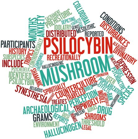 quantities: Abstract word cloud for Psilocybin mushroom with related tags and terms Stock Photo