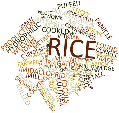rice paddy: Abstract word cloud for Rice with related tags and terms