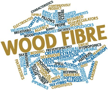 sustainably: Abstract word cloud for Wood fibre with related tags and terms Stock Photo