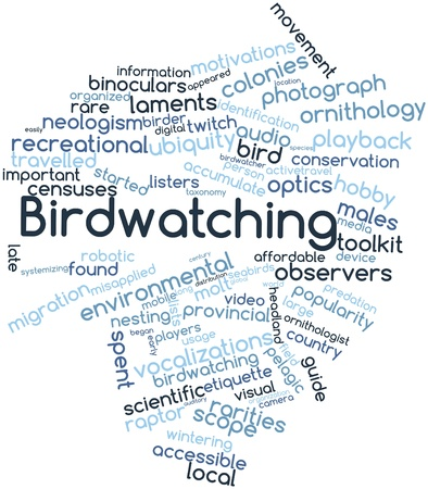 observers: Abstract word cloud for Birdwatching with related tags and terms