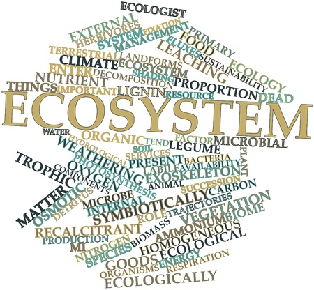 detritus: Abstract word cloud for Ecosystem with related tags and terms Stock Photo