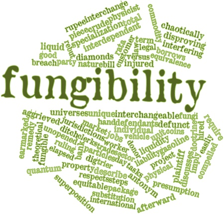 plaintiff: Abstract word cloud for Fungibility with related tags and terms
