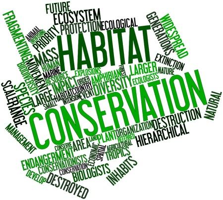 metodo cientifico: Nube palabra abstracta para la conservación del hábitat con las etiquetas y términos relacionados