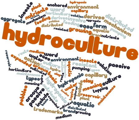hydroponic: Abstract word cloud for Hydroculture with related tags and terms