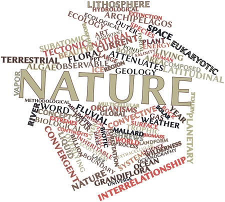 millimetre: Abstract word cloud for Nature with related tags and terms