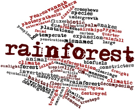 tribes: Abstract word cloud for Rainforest with related tags and terms
