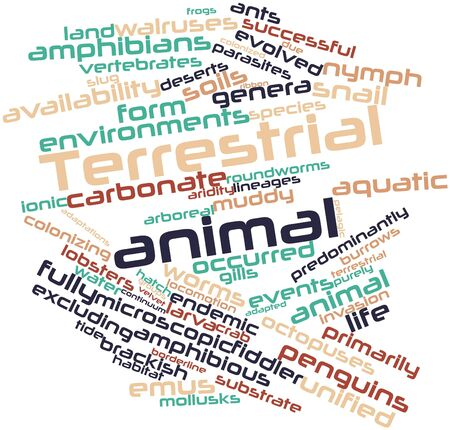 animal related: Abstract word cloud for Terrestrial animal with related tags and terms