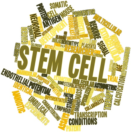 trials: Abstract word cloud for Stem cell with related tags and terms
