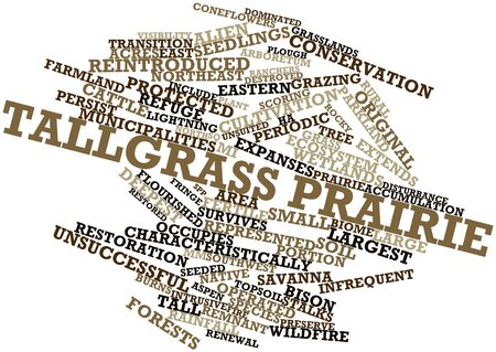 ranchers: Abstract word cloud for Tallgrass prairie with related tags and terms