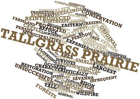 rancheros: Nube palabra abstracta para praderas de pastos altos con las etiquetas y t�rminos relacionados