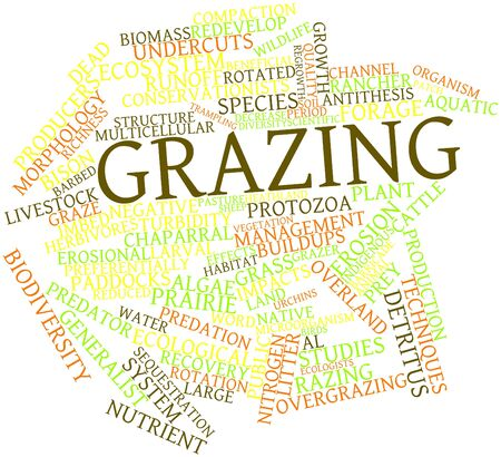 ecologists: Abstract word cloud for Grazing with related tags and terms Stock Photo