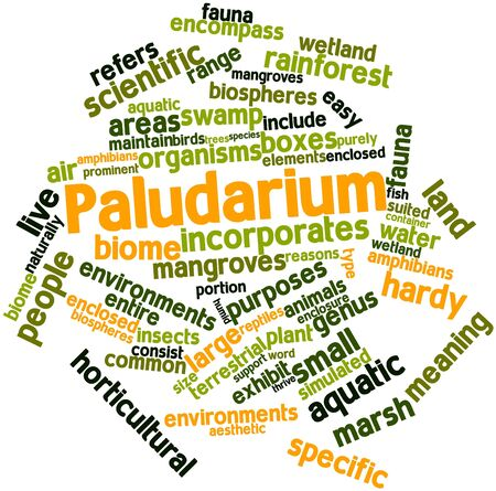 hardy: Abstract word cloud for Paludarium with related tags and terms Stock Photo