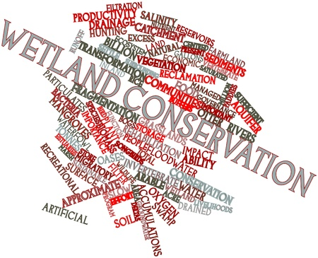wetland conservation: Abstract word cloud for Wetland conservation with related tags and terms