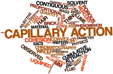 liquified: Abstract word cloud for Capillary action with related tags and terms