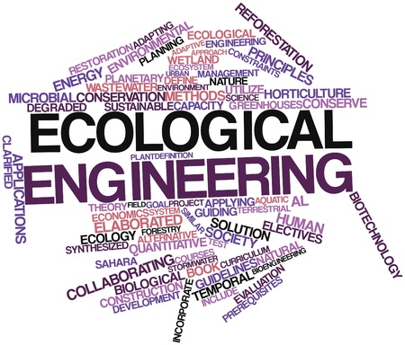incorporate: Abstract word cloud for Ecological engineering with related tags and terms