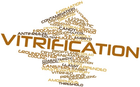 embedding: Abstract word cloud for Vitrification with related tags and terms