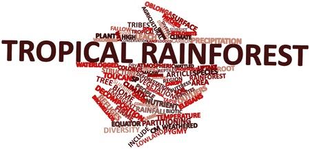 関連するタグと用語と熱帯雨林の抽象的な単語雲