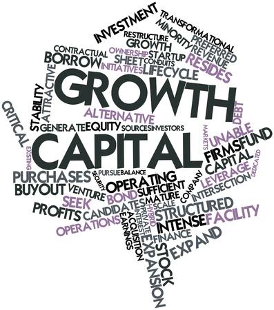 equidad: Nube palabra abstracta para capital de crecimiento con las etiquetas y términos relacionados