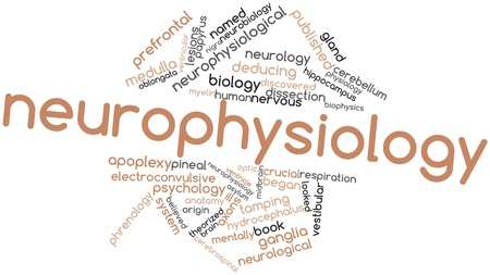 lesions: Abstract word cloud for Neurophysiology with related tags and terms