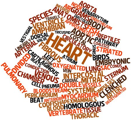 Abstract word cloud for Heart with related tags and terms Stock Photo - 16629303