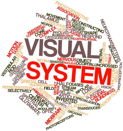correspond: Abstract word cloud for Visual system with related tags and terms