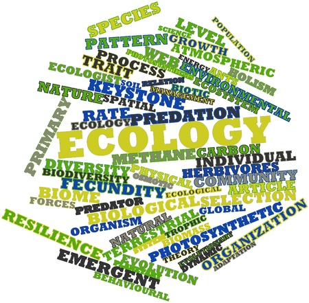 Abstract word cloud for Ecology with related tags and terms Stock Photo - 16633228