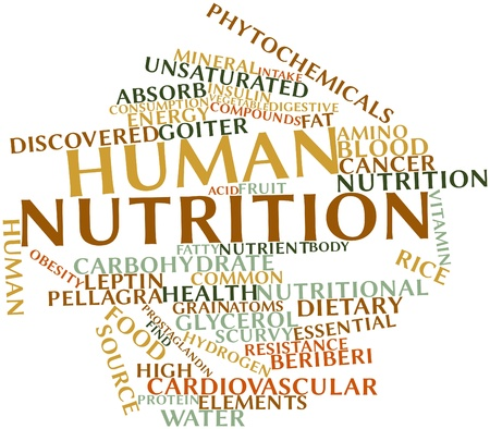 synthesize: Abstract word cloud for Human nutrition with related tags and terms