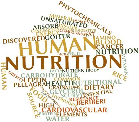in vitro: Nube palabra abstracta para la nutrición humana con etiquetas y términos relacionados