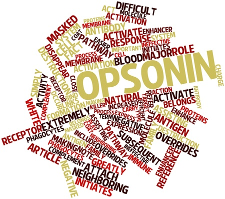 ineffective: Abstract word cloud for Opsonin with related tags and terms
