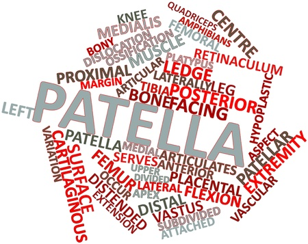 Abstract word cloud for Patella with related tags and terms Stock Photo - 16632356