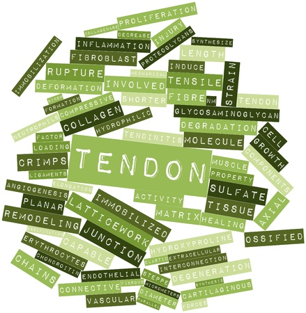 synthesize: Abstract word cloud for Tendon with related tags and terms Stock Photo