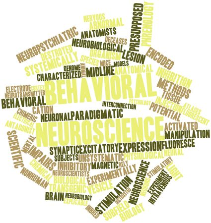 temporarily: Abstract word cloud for Behavioral neuroscience with related tags and terms Stock Photo