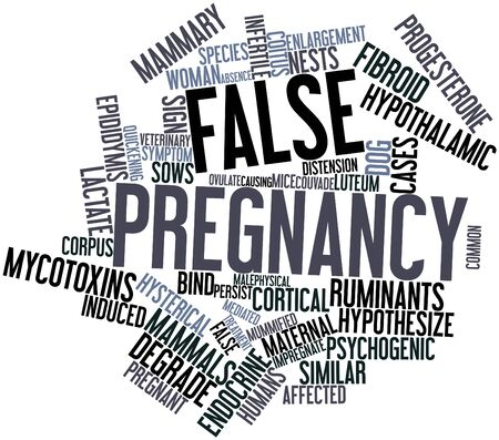 Abstract word cloud for False pregnancy with related tags and terms photo