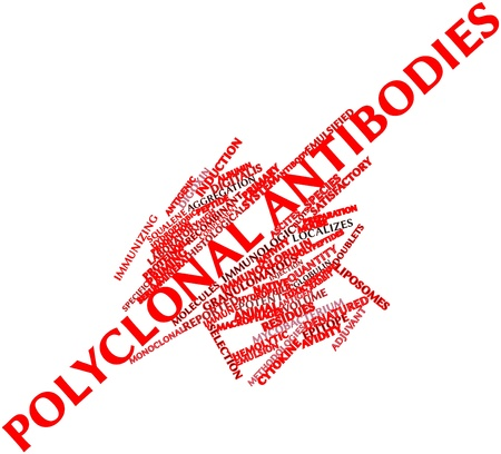 Abstract word cloud for Polyclonal antibodies with related tags and terms