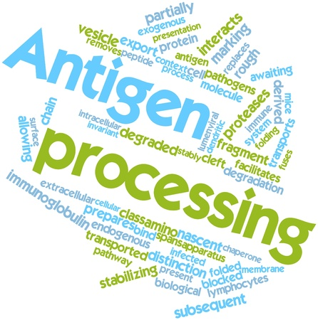 Abstract word cloud for Antigen processing with related tags and terms Stock Photo - 16631277