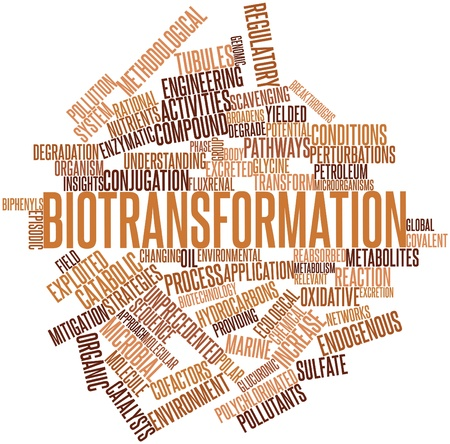 endogenous: Abstract word cloud for Biotransformation with related tags and terms