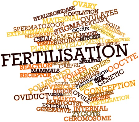 twinning: Abstract word cloud for Fertilisation with related tags and terms Stock Photo
