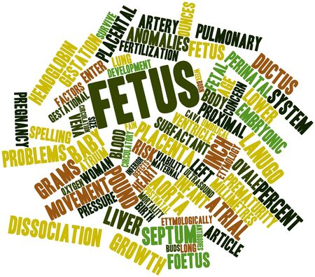 eyelids: Abstract word cloud for Fetus with related tags and terms