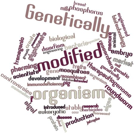 Abstract word cloud for Genetically modified organism with related tags and terms Stock Photo - 16632341